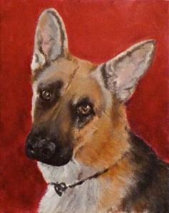 shepherd portrait