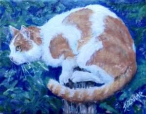 Cat Portrait Cleo